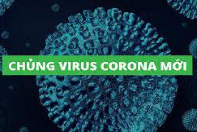 Thông báo về việc cho phép học sinh mầm non và phổ thông tiếp tục nghỉ học để phòng, chống dịch bệnh đường hô hấp do chủng mới của virus Corona gây ra